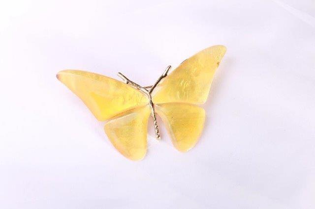 yel-butterfly-white-006