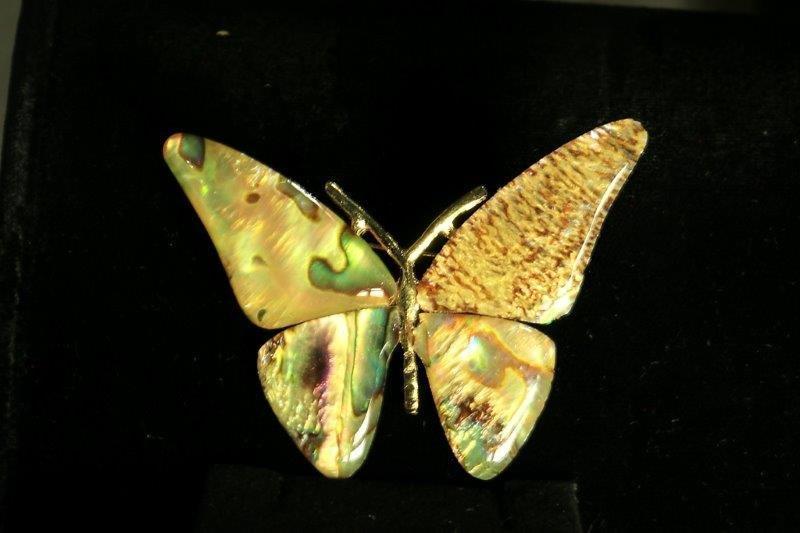 butterfly-1-006